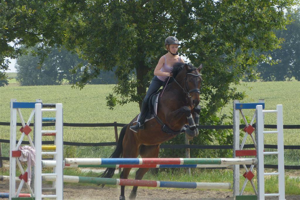 springen-juli-2013-009